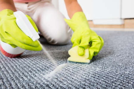 carpet stain: Close-up Of Woman Hand Spraying Detergent On The Carpet Or Rug Stock Photo
