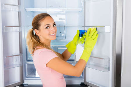 refrigerator: Young Happy Cleaning Lady Cleaning The Empty Refrigerator Door With Spray Bottle And Sponge Stock Photo