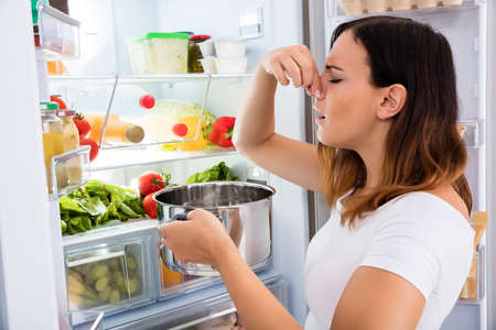 tainted: Young Woman Noticed Foul Smell Of Food Near Open Refrigerator