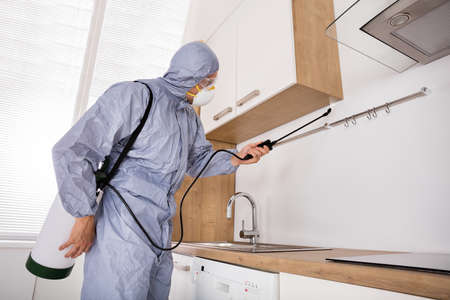 Pest Control Worker In Workwear Spraying Pesticide With Sprayer In Kitchen Stock Photo