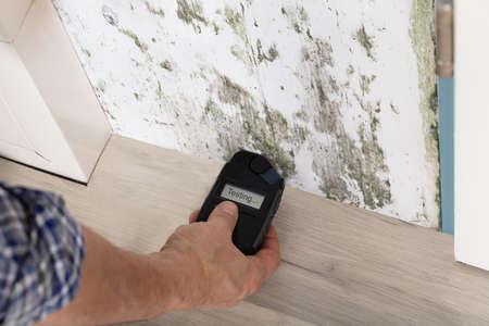 人の手がカビの生えた壁から水分を測定