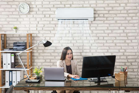 Happy Young Businesswoman Working In Office With Air Conditioning Stok Fotoğraf