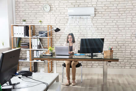 Happy Young Businesswoman Working In Office With Air Conditioning Banco de Imagens