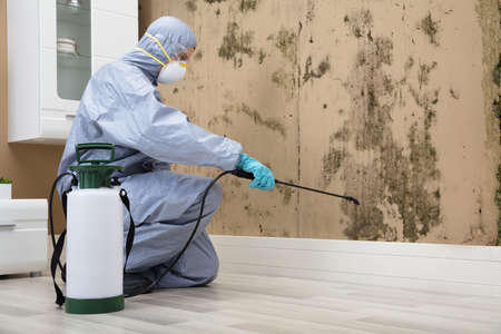 Pest Control Worker In Uniform Spraying Pesticide On Damaged Wall With Sprayer Stockfoto