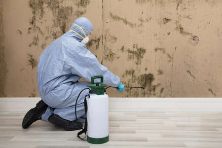 Rear View Of A Pest Control Worker In Uniform Spraying Pesticide On Wall With Sprayer Stock fotó