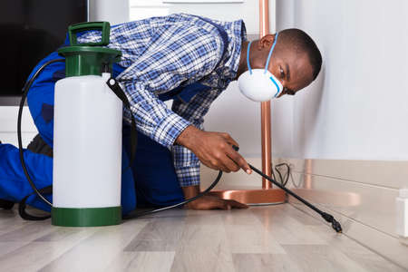 Young Male Worker Spraying Pesticide On Floor At Home