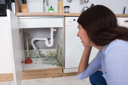 Young Woman Looking At Mold In Cabinet Area In Kitchen