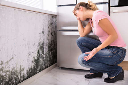 Close-up Of A Shocked Woman Looking At Mold On Wall Stockfoto