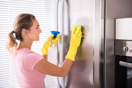 Happy Young Woman Cleaning Stainless Refrigerator With Sponge And Bottle Spray In Kitchen Standard-Bild