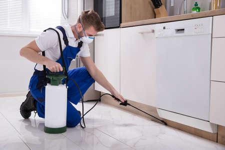Prodotto chimico di insetticida di spruzzatura del giovane lavoratore maschio dello sterminatore in cucina