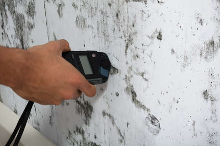 Close-up Of A Person's Hand Measuring Wetness Of Moldy Wall Foto de archivo