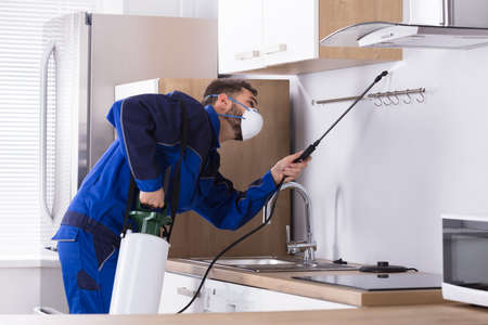 Pest Control Worker In Uniform Spraying Pesticide With Sprayer In Kitchen