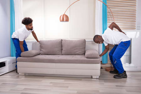 Young Male Movers With Backache Lifting Couch In The Living Room Stockfoto