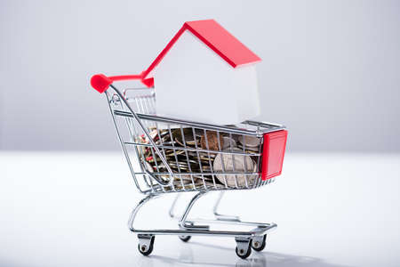Heap Of Coins And House Model Inside The Miniature Shopping Trolley Over The White Background Stock Photo