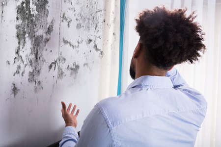Rear View Of A Young Man Looking At Mold On Wall