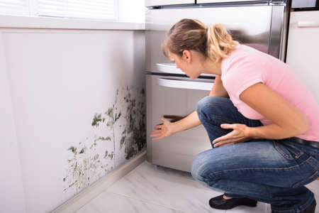 Close-up Of A Shocked Woman Looking At Mold On Wall Standard-Bild