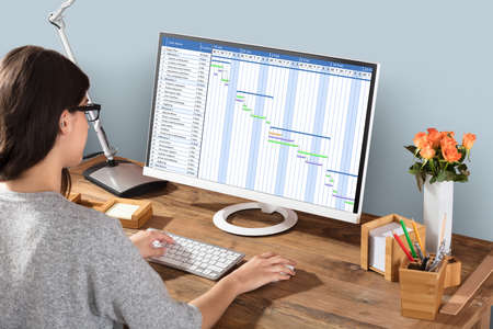 Young Woman Working On Gantt Chart Using Computer At Workplace