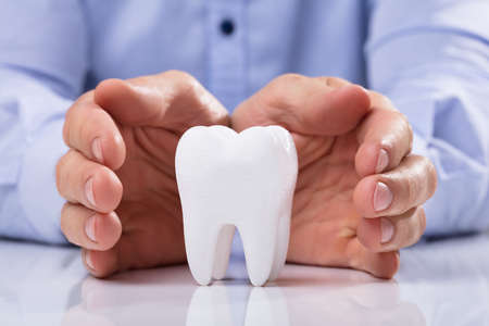 Mans Hand Protecting Healthy Hygienic White Tooth On Reflective Table Stock Photo