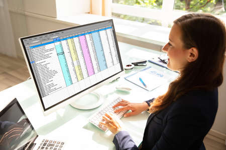 Professional Young Businesswoman Working On Computer In Office