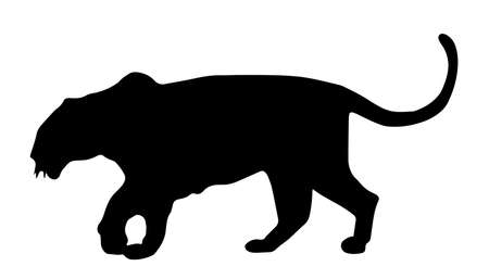 Black Silhouette Of A Leopard Walking On White Background Stock Illustratie