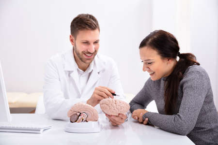 Doctor Explaining Details Of Human Brain To Happy Woman With Model