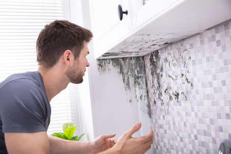 Side View Of A Young Man Looking At Mold On Wall