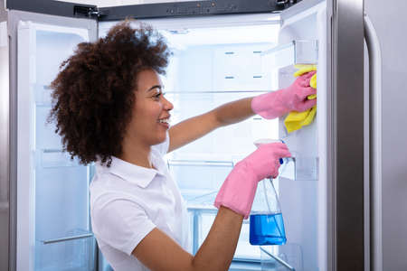 Young Happy Cleaning Lady Cleaning The Empty Refrigerator Door With Spray Bottle And Napkin Фото со стока