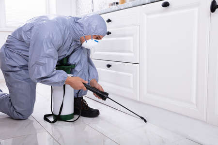 Male Exterminator Wearing Safety Cloths Spraying Pesticide In Kitchen 免版税图像