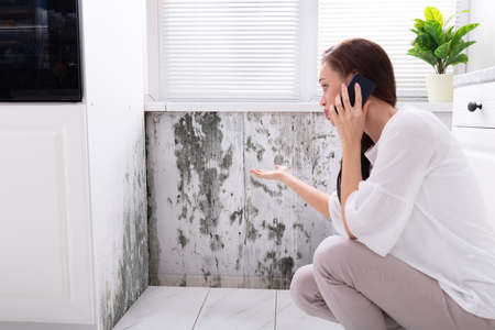 Side View Of A Young Woman Calling For Assistance On Cellphone Near Damaged Wall Standard-Bild