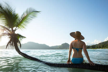 Rear View Of A Woman Sitting On The Palm Tree Trunk Over The Ocean Water