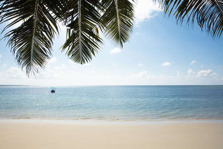 Green Palm Leaves Over The Beach And Single Boat On The Idyllic Blue Sea
