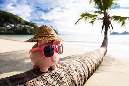 Close-up Of Pink Piggybank With Sunglasses On Tree Trunk At Beach Stockfoto