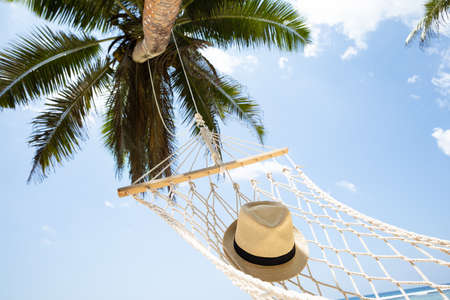 Close-up Of Hat On Hammock Under The Palm Tree Against Blue Sky