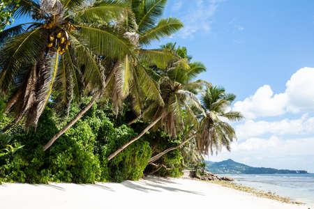 Scenic View Of Idyllic Anse Baleine Beach, Mahe Island, Seychelles