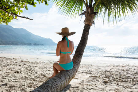 Rear View Of A Woman In Blue Bikini Sitting On Palm Tree Trunk At Beach