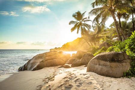 Sunlight Over Palm Trees On Anse Intendance Beach, Mahe Island, Seychelles