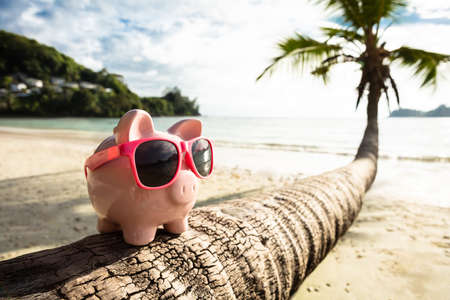 Close-up Of Pink Piggybank With Sunglasses On Tree Trunk At Beach