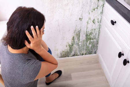 Side View Of A Young Woman Looking At Mold On Wall