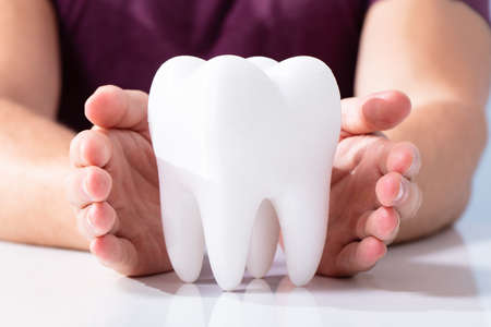A Person's Hands Protecting Healthy Hygienic White Tooth On Reflective White Table