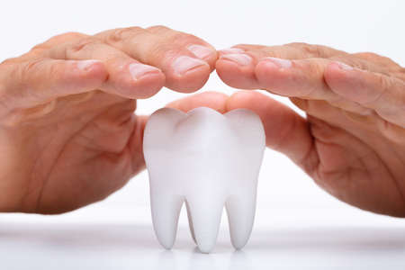 Close-up Of A Man's Hand Protecting Healthy Hygienic White Tooth Banque d'images - 129215847