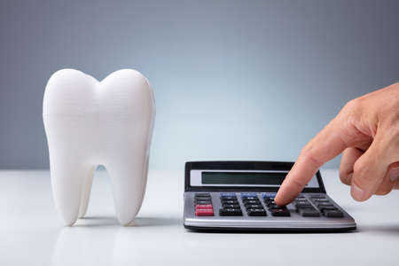 Person Calculating Expenses Near Tooth Model Over White Desk Stock Photo