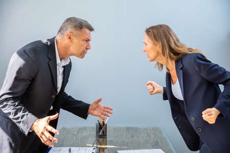 Side View Of Two Angry Mature Businesspeople Looking At Each Other Standing Face To Face