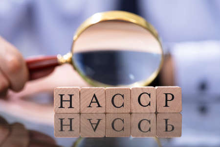 Man Looking At HACCP Letters Using Magnifying Glass