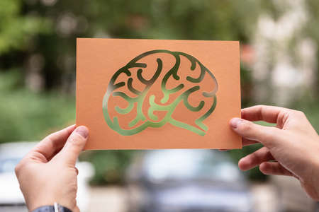 Hands Holding Paper With Cutout Brain Outdoors