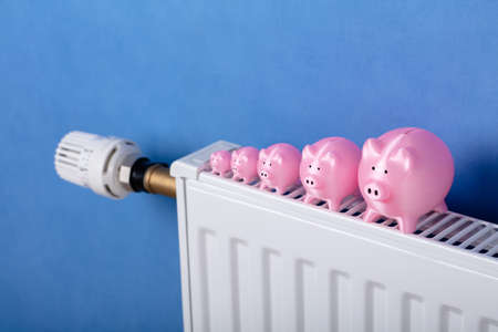 Close-up Of Pink Piggy Banks Kept In A Row On Radiator