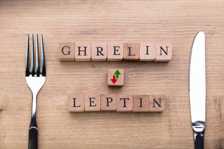 Ghrelin And Leptin Hormones Controlling Hunger Levels Near Fork And Knife 免版税图像