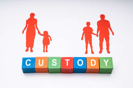 Elevated View Of Word Custody With Paper Figures Of Family On White Background