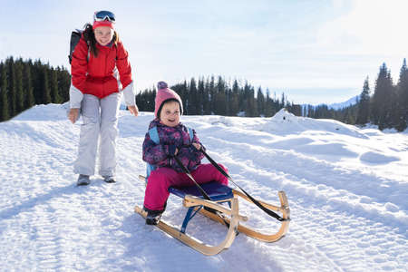 Adorable Girl Enjoying Sledding While Her Mother Pushing Sledge Against Pine Tree Forest During Winter