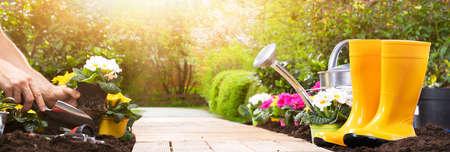 Ensemble d'outils de jardinage et fleurs dans le jardin ensoleillé Banque d'images