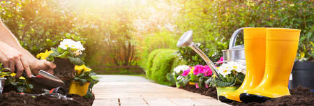 Gardening Tools Set And Flowers In Sunny Garden Stock Photo